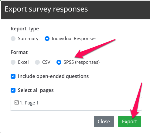 Choose SPSS and then click export